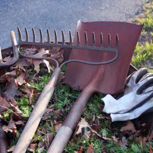 narzędzia w ogrodzie