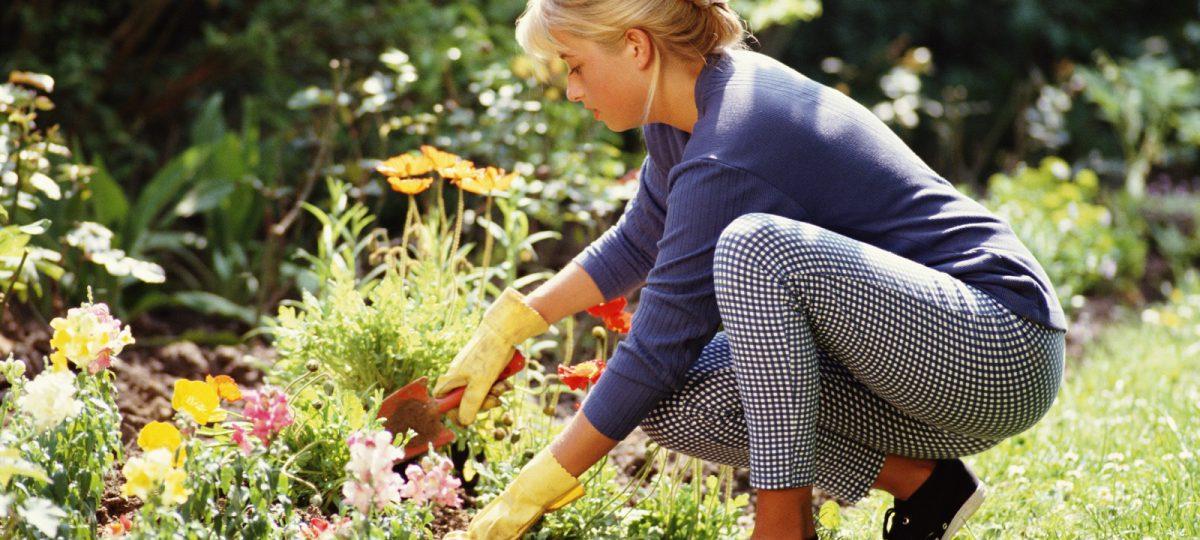 narzędzia ogrodowe u